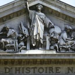 photo du Museum D'histoire Naturelle à Nantes
